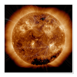 Plakat Magnetic field lines on the Sun