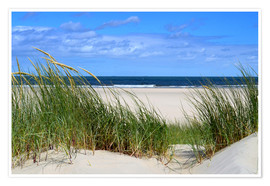 Plakat  from the dune overlooking the sea - Susanne Herppich