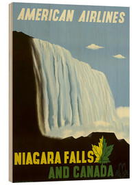 Obraz na drewnie  American Airlines Niagara Falls and Canada - Travel Collection