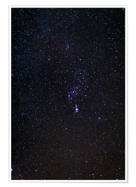 Plakat The Orion Constellation