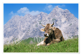 Plakat Cow on a mountain meadow
