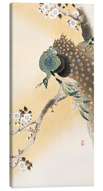 Obraz na płótnie  A peacock in a cherry tree crown - Ohara Koson