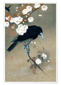 Plakat Crow and blossom