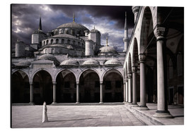 Obraz na aluminium  Lady and the mosque - Daniel Murphy