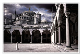 Plakat  Lady and the mosque - Daniel Murphy