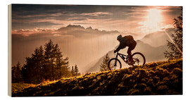 Obraz na drewnie  Golden hour biking - Sandi Bertoncelj