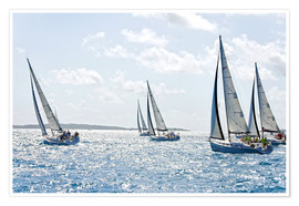 Plakat Sailboat regattas