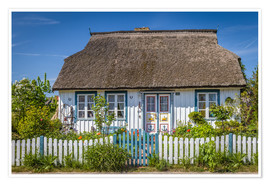 Plakat  Thatched cottage on the Baltic Sea - Christian Müringer