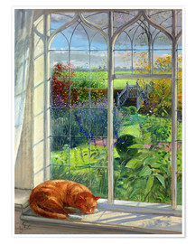 Plakat Cat in the window in summer
