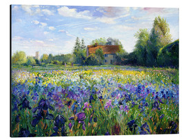 Obraz na aluminium  Field of flowers in the sunset - Timothy Easton