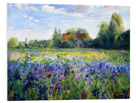 Obraz na PCV  Field of flowers in the sunset - Timothy Easton