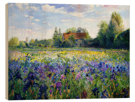 Obraz na drewnie  Field of flowers in the sunset - Timothy Easton