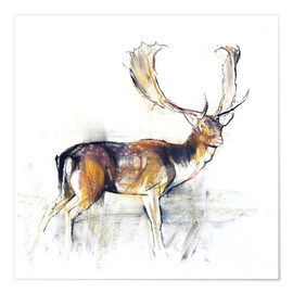Plakat Study of a Stag