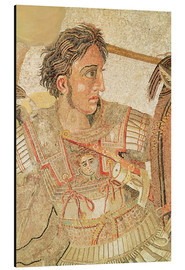 Obraz na aluminium  Alexander the Great - Roman