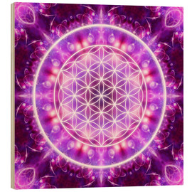 Obraz na drewnie  Flower of Life, transformation - Dolphins DreamDesign