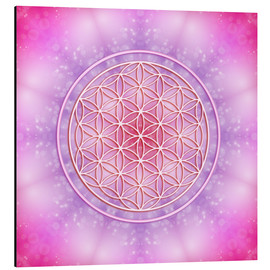 Obraz na aluminium  Flower of life - unconditional love - Dolphins DreamDesign