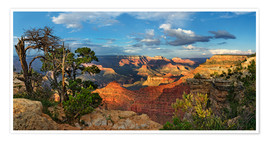 Plakat Grand Canyon with knotty pine