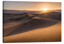 Obraz na płótnie  Sunset at the Dunes in Death Valley - Andreas Wonisch