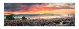 Plakat  Panorama perfect sunrise heath - Sander Grefte