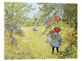 Obraz na PCV  The Apple Harvest - Carl Larsson