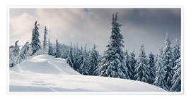 Plakat Winter in the Mountains
