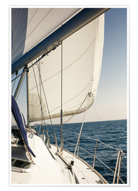 Plakat  White sails and the open sea