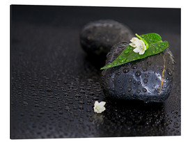 Obraz na aluminium  Black stones with leaf