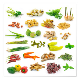 Plakat Vegetable and herb collection