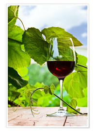 Plakat  glass with red wine in vineyard