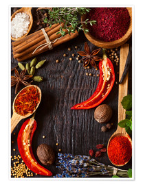 Plakat  Hot spices and herbs