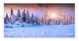 Plakat  Winter Sunrise in the Mountain Forest