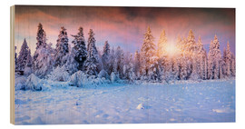 Obraz na drewnie  Winter Sunrise in the Mountain Forest