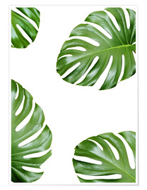 Plakat  Attack of the Monstera - Finlay and Noa
