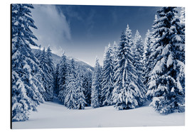 Obraz na aluminium  Winter landscape with snow covered trees