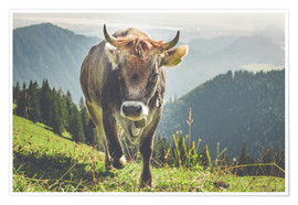 Plakat Cow in the mountains