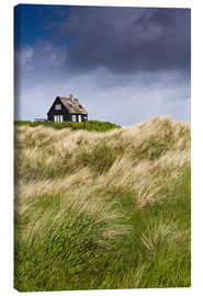 Obraz na płótnie  Cottage in the dunes during storm