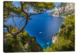 Obraz na płótnie  Wonderful sea view in Capri (Italy) - Christian Müringer