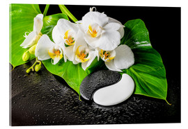 Obraz na szkle akrylowym  White orchids and Yin-Yang stones