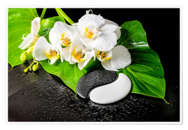 Plakat  White orchids and Yin-Yang stones