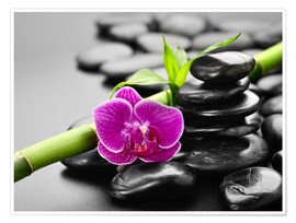 Plakat Basalt stones, bamboo and orchid