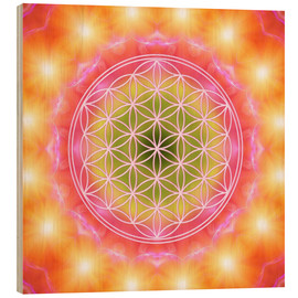 Obraz na drewnie  Flower of life - heart energy - Dolphins DreamDesign
