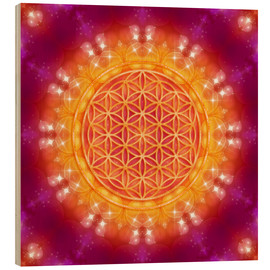 Obraz na drewnie  Flower of Life - Abundance - Dolphins DreamDesign