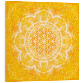 Obraz na drewnie  Flower of life - light power - Dolphins DreamDesign