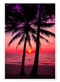 Plakat Palm trees and tropical sunset