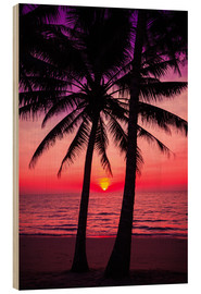 Obraz na drewnie  Palm trees and tropical sunset