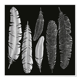 Plakat  Feathers in silver