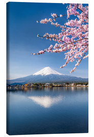 Obraz na płótnie  Mount Fuji and Lake Kawaguchiko in Japan during the cherry blossom season - Jan Christopher Becke