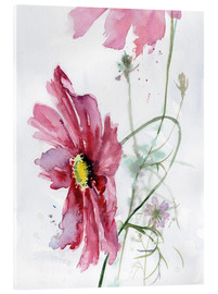 Obraz na szkle akrylowym  Cosmos flower watercolor - Verbrugge Watercolor