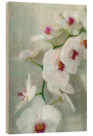 Obraz na drewnie  Composition of a white orchid with transparent texture - Alaya Gadeh