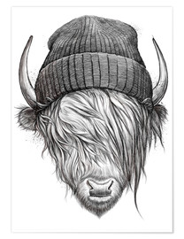Plakat Bull in a hat